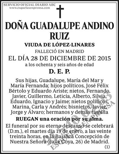 Guadalupe Andino Ruiz
